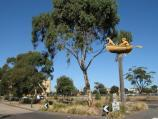 Albert Park / Gasworks Art Park, Graham Street / Man Dog Boat sculpture, Graham St at Pickles St