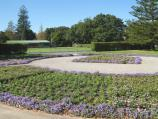 Albert Park / St Vincent Gardens and surroundings / Floral display at bowling club