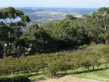 Arthurs Seat / Arthurs Hotel at mountain peak / View across vineyard with views in background
