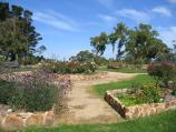Arthurs Seat / Seawinds Gardens, Arthurs Seat State Park, Purves Road / Rose garden near Bay Lookout
