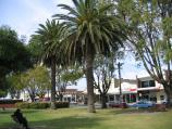 Bairnsdale / Commercial centre and shops / View east along Main St gardens between Service St and Bailey St