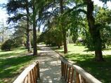 Ballarat / Buninyong - botanical gardens / View through gardens from footbridge over creek