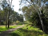 Barnawartha / Indigo Creek Park, High St / Path along eastern side of Indigo Creek