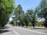 Beaufort / Western Highway, east side of Beaufort / View west along Neill St (Avenue of Honour), west of Racecourse Rd