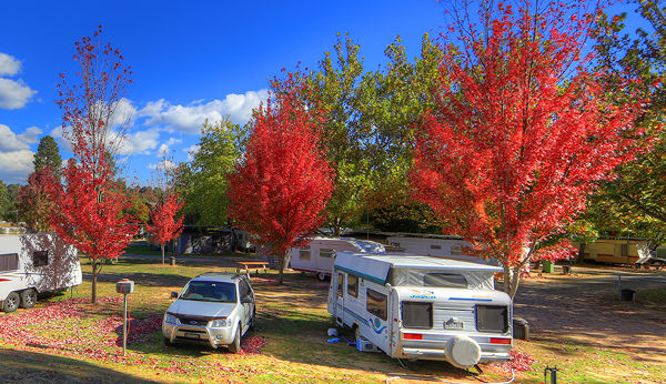 Beechworth Lake Sambell Caravan Park, Beechworth