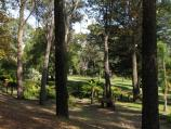 Beechworth / La Trobe University / Fernery and gardens