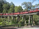 Belgrave / Puffing Billy viewing area, Gembrook Road at railway bridge / Puffing Billy on trestle bridge over Monbulk Creek