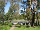 Belgrave / Birdsland Reserve, Mt Morton Road, Belgrave Heights / Path to jetty on north side of western lake