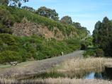 Berwick / Wilson Botanic Park / Basalt rock face at Basalt Lake