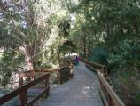 Berwick / Wilson Botanic Park / Boardwalk along western side of Basalt Lake