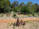 Blackwood / St Erth Gardens, Simmons Reef Road / Catalogue Hill with drought tolerant plants
