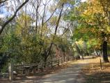 Bright / Howitt Park, Centenary Park, Ovens River / Walking path along river at playground, Howitt Park