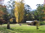 Bright / Howitt Park, Centenary Park, Ovens River / View north through Centenary Park towards BBQ shelter