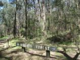Cockatoo / Wright Forest / Access to forest from southern end of Wright Rd