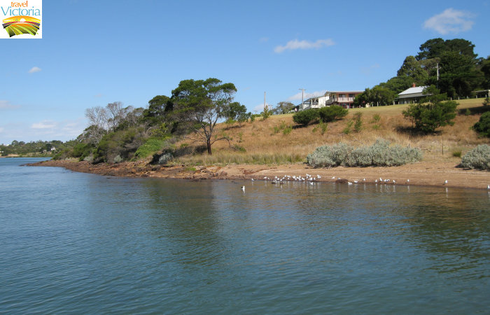 Corinella - Coastal views east of boat ramp