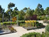 Cranbourne / Australian Garden at Royal Botanic Gardens Cranbourne / Water Saving Garden