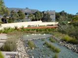 Cranbourne / Australian Garden at Royal Botanic Gardens Cranbourne / View along Rockpool Waterway towards visitor centre