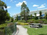 Croydon / Town Park, Mt Dandenong Road, Civic Square and Norton Road / Picnic area in front of lake and aquatic centre