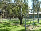 Dandenong / Greaves Reserve, Bennet Street / Fenced animal yards next to Exhibition Pavilion