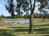 Dandenong / Tirhatuan Park, off Outlook Drive / Southern lake