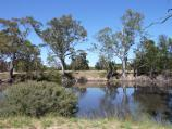 Dimboola / Wimmera River at boat ramp, southern end of Lloyd Street / View across river