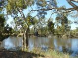 Dimboola / Wimmera River at boat ramp, southern end of Lloyd Street / View south across river