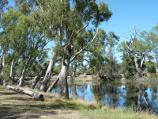 Dimboola / Dimboola Recreation Reserve, Lloyd Street / View across Wimmera River