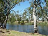 Dimboola / Wimmera River at Wimmera Street bridge / View west across river