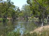 Dimboola / Golf Course Road along Wimmera River / View south-east along river