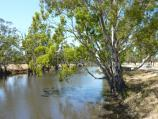 Dimboola / Weir on Wimmera River, off Golf Course Road / View south-east along river