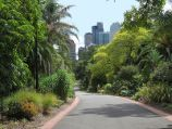 East Melbourne / Fitzroy Gardens / View along path towards Melbourne CBD