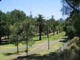 East Melbourne / Yarra Park at Jolimont and surroundings / View west through Yarra Park near Jolimont station