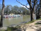 Echuca / The historic Port of Echuca / View across Murray River to boat moorings at Echuca, from slipway off Hunt St, Moama N.S.W.