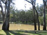 Echuca / Aquatic Reserve and Murray River bridge / Waterways around Aquatic Reserve near Visitor Information Centre