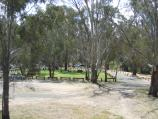 Echuca / Campaspe River at Lions Park, Campaspe Esplanade / View of Lions Park fronting Campaspe River