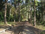 Emerald / Emerald Lake Park / Puffing Billy railway line at Nobelius station platform