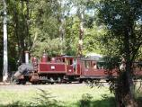 Emerald / Emerald Lake Park / Puffing Billy train near Nobelius station