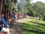 Emerald / Emerald Lake Park / Puffing Billy through park