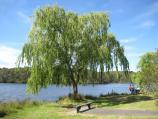 Emerald / Henleys Picnic Area, Aura Vale Lake / View across lake