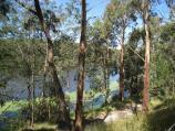 Emerald / Henleys Picnic Area, Aura Vale Lake / View across lake from pathway through bush along shoreline