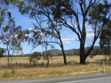 Euroa / Around Euroa and outskirts / View south-east from Euroa Main Road, 3 km south-west of town centre