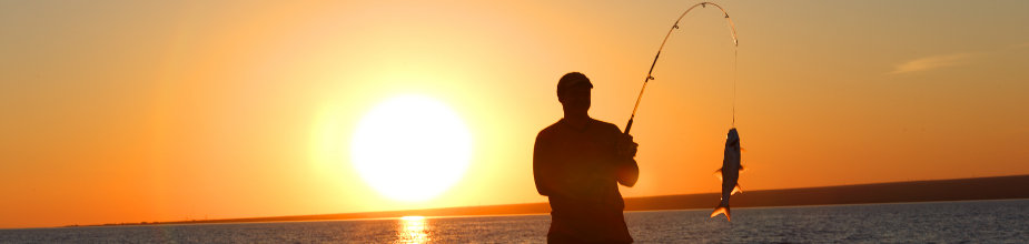 Melbourne & Suburbs fishing charters