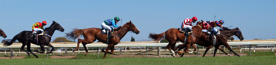 High Country racecourses