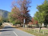 Harrietville / Tauare Park, Pioneer Park and Ovens River East Branch / View along Mount Feathertop Rd at Tauare Park