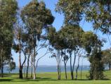 Hastings / Foreshore and Fred Smith Reserve, Marine Parade / View across reserve towards bay
