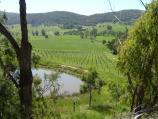 Healesville / Old Healesville Road / North-east view towards vineyard, west of Long Gully Rd