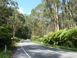 Healesville / Watts River, Maroondah Highway north-east of Healesville / View south along Maroondah Hwy towards Watts River