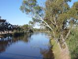 Horsham / Wimmera River viewed from bridge at Stawell Road / View east along river