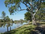 Horsham / Wimmera River at southern end of Firebrace Street / View west along river