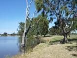 Horsham / Wimmera River at boat ramp at southern end of Drummond Street / View south-west along river